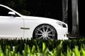 Картинка белый, трава, газон, бмв, BMW, диски, семёрка