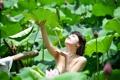 Картинка лето, вода, девушка, лилии, азиатка