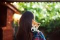 Картинка девушка, настроения, собака, брюнетка, боке