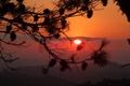 Картинка небо. закат, ветки, деревья, природа