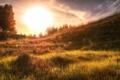 Картинка поле, свет, пейзаж, закат