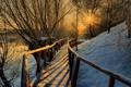 Картинка солнце, деревья, закат, река, перила, деревянный, мостик