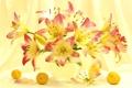 Картинка лето, свет, лилии, букет, абрикосы