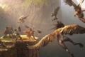 Картинка горы, птицы, высота, крылья, войны, арт, битва