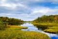 Картинка небо, трава, вода, облака, деревья, отражение, Норвегия