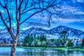 Картинка деревья, горы, река, берег, дома, обработка, Калифорния