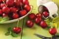 Картинка красный, ягоды, кружка, мята, вишни, ножницы