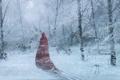 Картинка зима, лес, снег, деревья, красный, фигура, арт