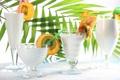 Картинка листья, апельсин, киви, бокалы, фрукты, банан, ломтики
