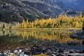 Картинка осень, лес, деревья, горы, озеро