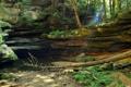 Картинка камни, ручей, лес, вода, скала, деревья, полумрак
