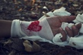 Картинка сердце, листья, бинт, кровь, рука