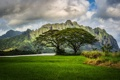 Картинка трава, облака, пейзаж, горы, природа, река, Гавайи