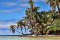 Картинка песок, море, зелень, пляж, пальмы, океан, остров