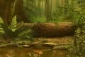 Картинка рыбки, лес, папоротник, вода, дерево