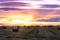 Картинка закат, пейзаж, поле, сено