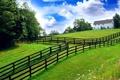 Картинка небо, трава, деревья, природа, голубое, ограда, сад