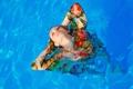 Картинка девушка, одежда, мокрая, бассейн