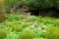 Картинка кусты, деревья, трава, сад, зелень, тропинка, цветы