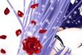 Картинка девушка, лицо, роза, лепестки, арт, Vampire Knight, shizuka sama