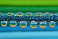 Картинка капли, ряд, вода, цвет, роса