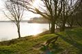 Картинка солнце, деревья, скамейка, озеро, весна, лужайка