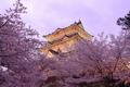 Картинка деревья, весна, пагода, цветение, Япония