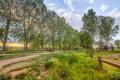 Картинка дорога, лето, трава, деревья, забор, домик