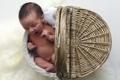 Картинка настроение, корзинка, младенец
