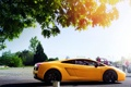 Картинка машина, свет, Lamborghini Gallardo