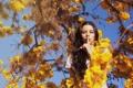 Картинка девушка, фон, дерево