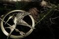 Картинка стрела, трава, металл, птица, брошь, лист