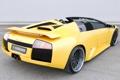 Картинка вид сзади, yellow, ламборгини, Murcielago, Lamborghini, Hamann, Roadster
