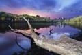Картинка пейзаж, природа, город, река, обои, wallpaper, бревно