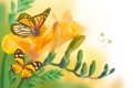Картинка бабочки, цветы, желтые, бутоны, цветение, листики