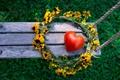 Картинка лето, цветы, природа, качели, сердце, венок