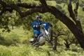 Картинка дерево, прыжок, колесо, гонщик, ямаха