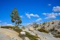 Картинка камни, Yosemite National Park, скалы, небо, облака, Йосемити, дерево