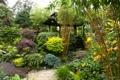 Картинка зелень, цветы, сад, беседка, кусты