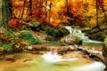 Картинка лес, ручей, фото, природа, осень, камни