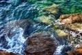 Картинка камни, водоросли, море