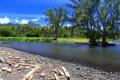 Картинка горы, тропики, пальмы, побережье, Tahiti, Таити, Французская Полинезия