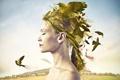 Картинка девушка, птицы, креатив, профиль
