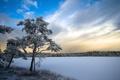Картинка пейзаж, озеро, дерево