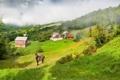 Картинка трава, туман, лошадь, дома, склон, сопки