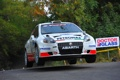 Картинка Ралли, Abarth, Белый, WRC, Лес, Передок, Rally