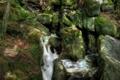 Картинка река, ручей, камни, скалы, мох, поток