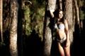 Картинка девушка, деревья, фон