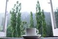 Картинка чай, утро, окно, чашка, блюдце