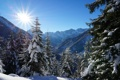 Картинка зима, лес, небо, солнце, свет, снег, горы